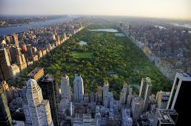 22nd November, DAY 5 LEADERSHIP SPEAKING & TOUR OF CENTRAL PARK. CLOSE WITH DINNER AND DRINKS.